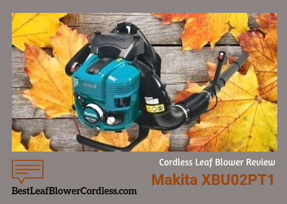 How to buy Makita Battery Powered Leaf Blower?