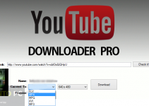 Getintopc YouTube Downloader PRO Free Download For Windows